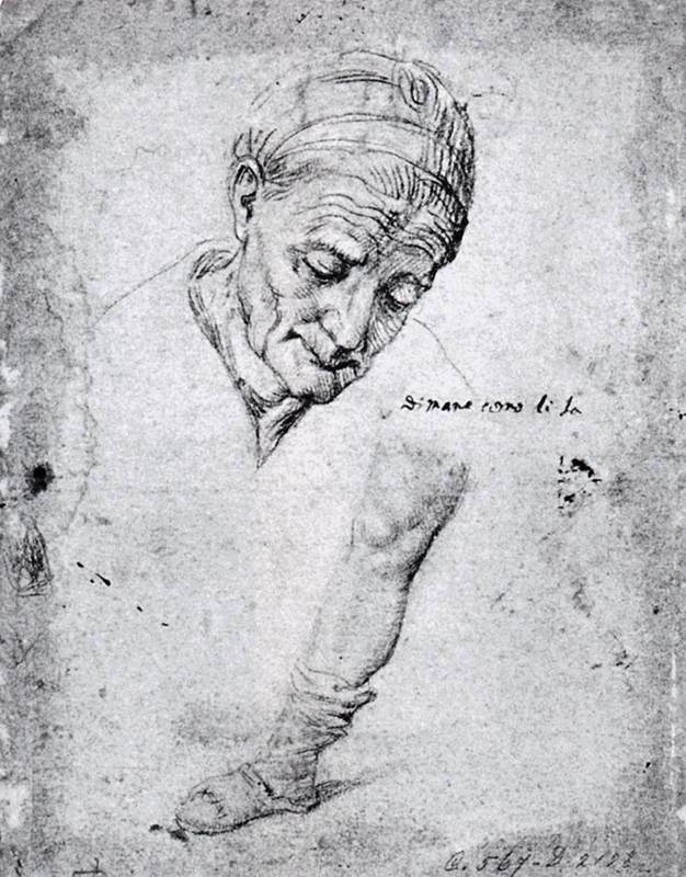 Studies of an Old Woman's Face and a Leg by Antonio Campi